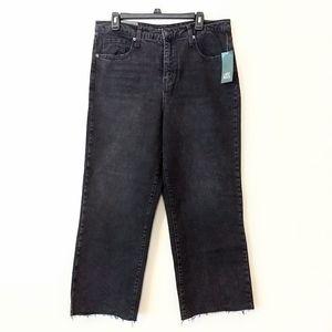 NWT Wild Fable Black Denim High Waist Skater Jeans